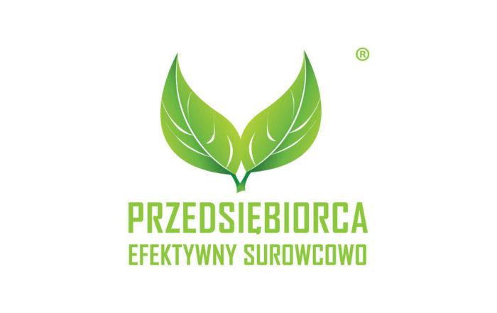 Katarzyna Michniewska Przedsiębiorca efektywny Surowcowo